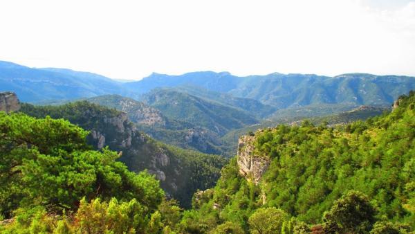Mejores bosques de la Comunidad Valenciana - Parque Natural de la Tinença de Benifassà (Castellón)