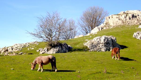 Los mejores parques naturales del País Vasco - Parque Natural de Aizkorri