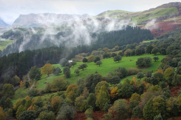 Los mejores parques naturales del País Vasco - Parque Natural de Armañón, uno de los mejores parques naturales del País Vasco