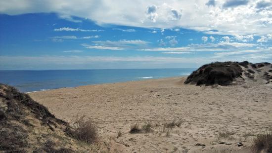 Las playas más bonitas de Valencia - Playa de la Devesa