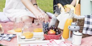 Ideas de comida para un picnic familiar
