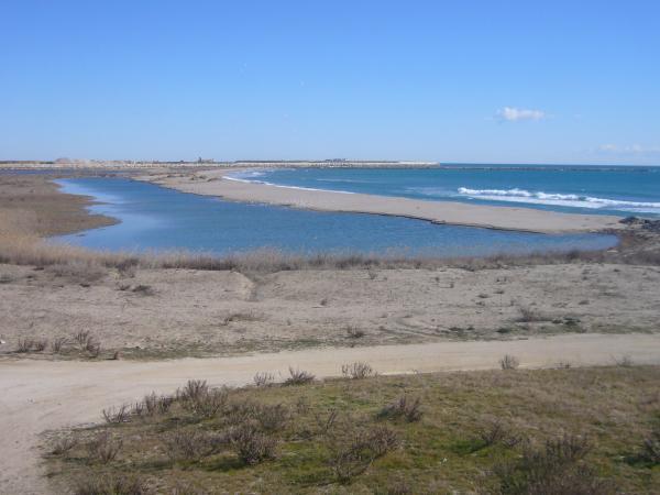 Los mejores parques naturales cerca de Barcelona - Delta del Llobregat