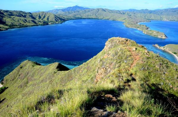 Dónde hacer submarinismo en Indonesia - Parque Nacional de Komodo, un Patrimonio de la Humanidad