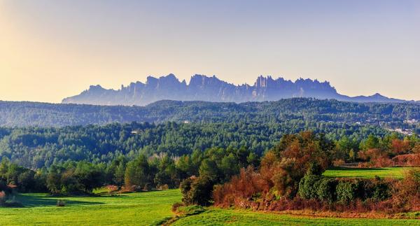 Los mejores parques naturales en Cataluña - Parque Natural de la Montaña de Montserrat