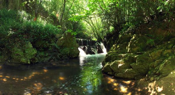 Los mejores parques naturales en Cataluña - Parque Natural del Montseny