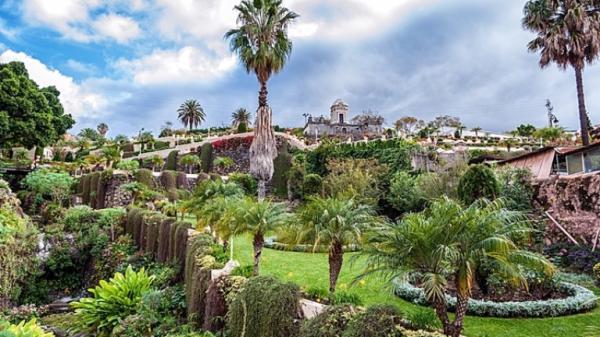 """Qué ver en Las Palmas de Gran Canaria - El Jardín Botánico Canario """"Viera y Clavijo"""""""