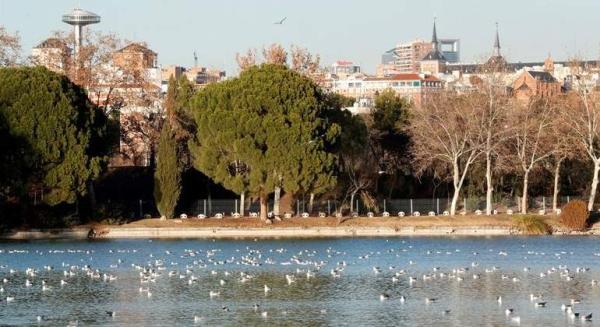 Dónde ver el mejor atardecer en Madrid - Casa de Campo, otro parque para disfrutar del atardecer