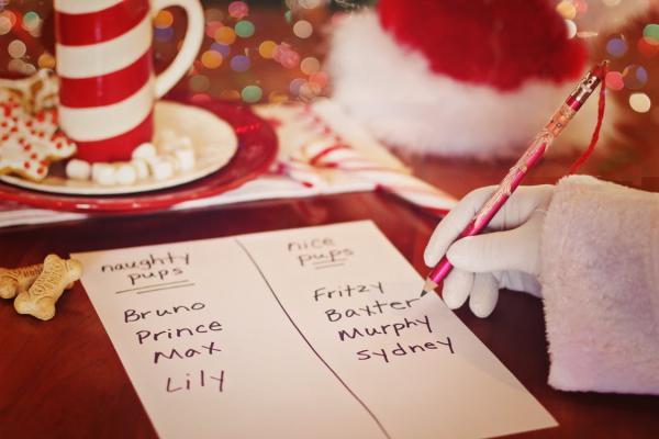 Qué hacer en Navidad en Nueva York - Otros lugares con encanto para visitar en Navidad en Nueva York