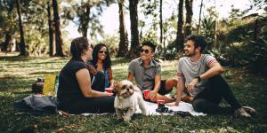 Ideas para un picnic con amigos