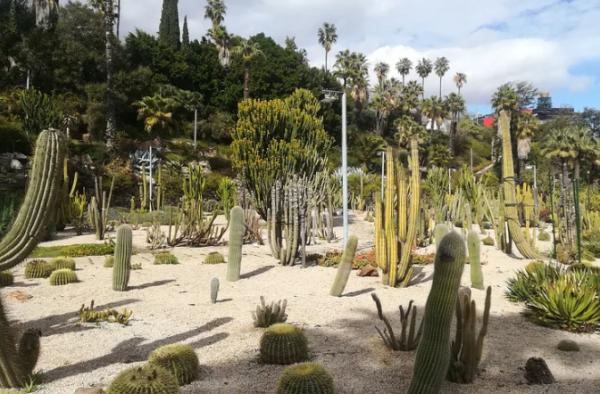 Sitios para hacer fotos en Barcelona - Jardines de Mossèn Costa i Llobera